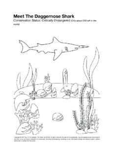 DOWNLOAD A FREE SAMPLE COLORING PAGE